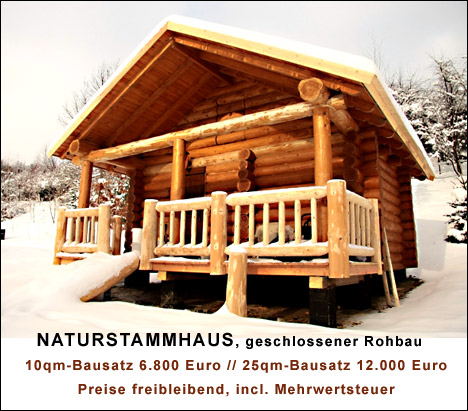 g nstig naturstammhaus holzhaus u blockhausbau gartenh user pavillons in berlin und ganz. Black Bedroom Furniture Sets. Home Design Ideas